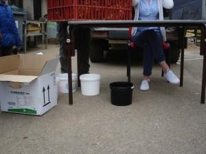 Les seaux distribués avec les poules pour évaluer la quantité de déchets alimentaires dévorée par les volatiles.