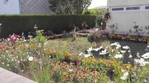 Le jardin de Mme Viard, comme toujours, un plaisir pour les yeux !